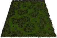 Forest Overgrowth Map.png